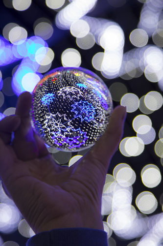Magical Winter Lights KAC1419