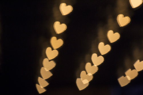 Heart-sharped bokah, bokeh, blown out background, blurry background.