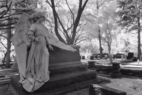 Glenwood Cemetery KAC5886_1