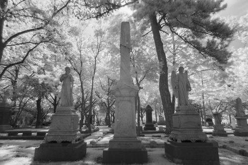 Glenwood Cemetery KAC5888_1