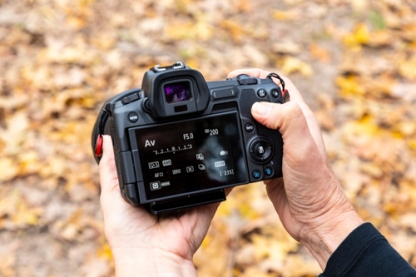 Canon EOS R, Huntsville State Park, Huntsville, Texas, Autumn