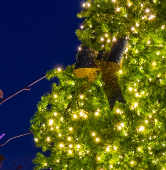Canon EOS R, Christmas tree, lights, twilight, The Woodlands, Texas, Hughes Landing.