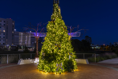 Christmas tree, lights, twilight, The Woodlands, Texas, Hughes Landing.