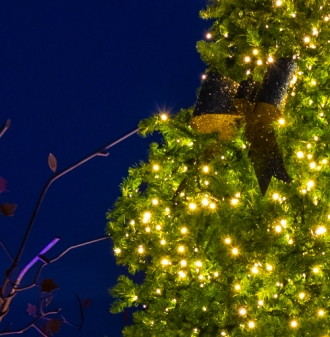 Christmas tree, lights, twilight, The Woodlands, Texas, Hughes Landing.
